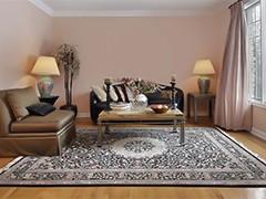 Новинки ковров в гостиную
