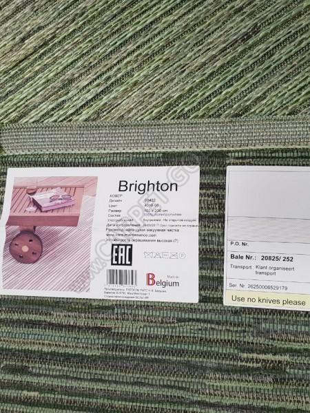 Brighton 98422 401096